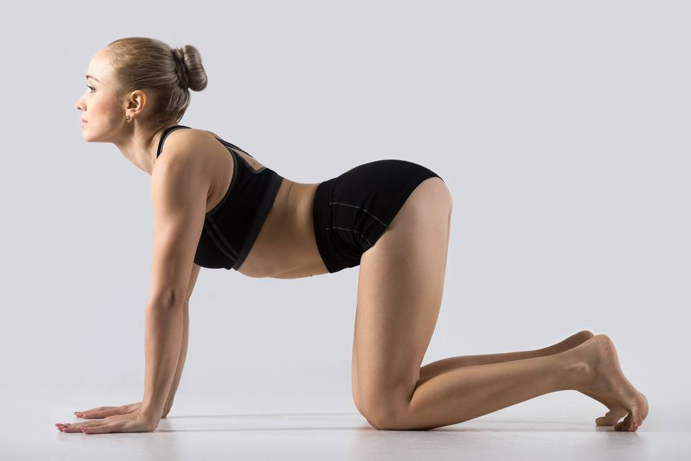 gimnastyka kręgosłupa