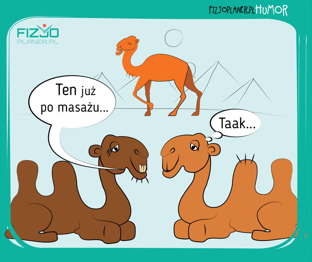 masaż - fizjoplaner.pl/humor